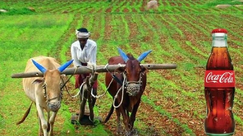 Innovative Farmers