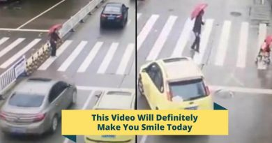 What This Car Driver Did To Help An Elderly Woman Make You Smile