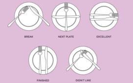 Common Etiquette Rules