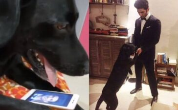 Video Fudge, Sushant Pet Dog