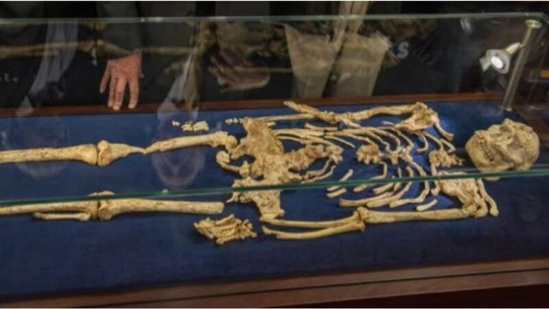 Oldest Human Skeleton artifacts