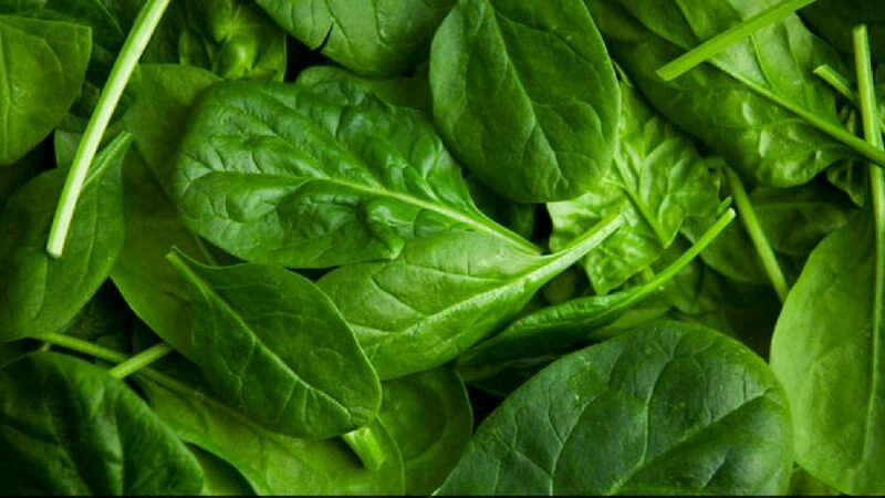 Don't eat spinach raw