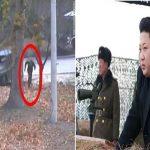North Korean Soldier Crosses Border And Flees To South Korea And His Comrades Shot At Him: Video