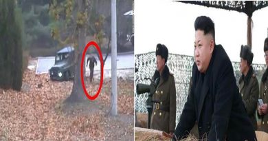 North Korean Soldier Crosses Border And Flees To South Korea And His Comrades Shot At Him: Video