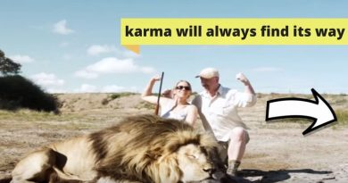 2 Hunters Pose Behind A Dead Lion For A Photo: But Karma Hit Them Back, Check Video