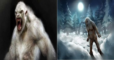 """The Creature Called """"Yeti"""" Is Actually An Evolved Form Of A Bear"""